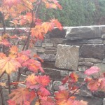 stone wall portfolio